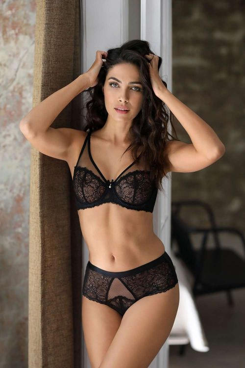 Boxer with chantilly lace